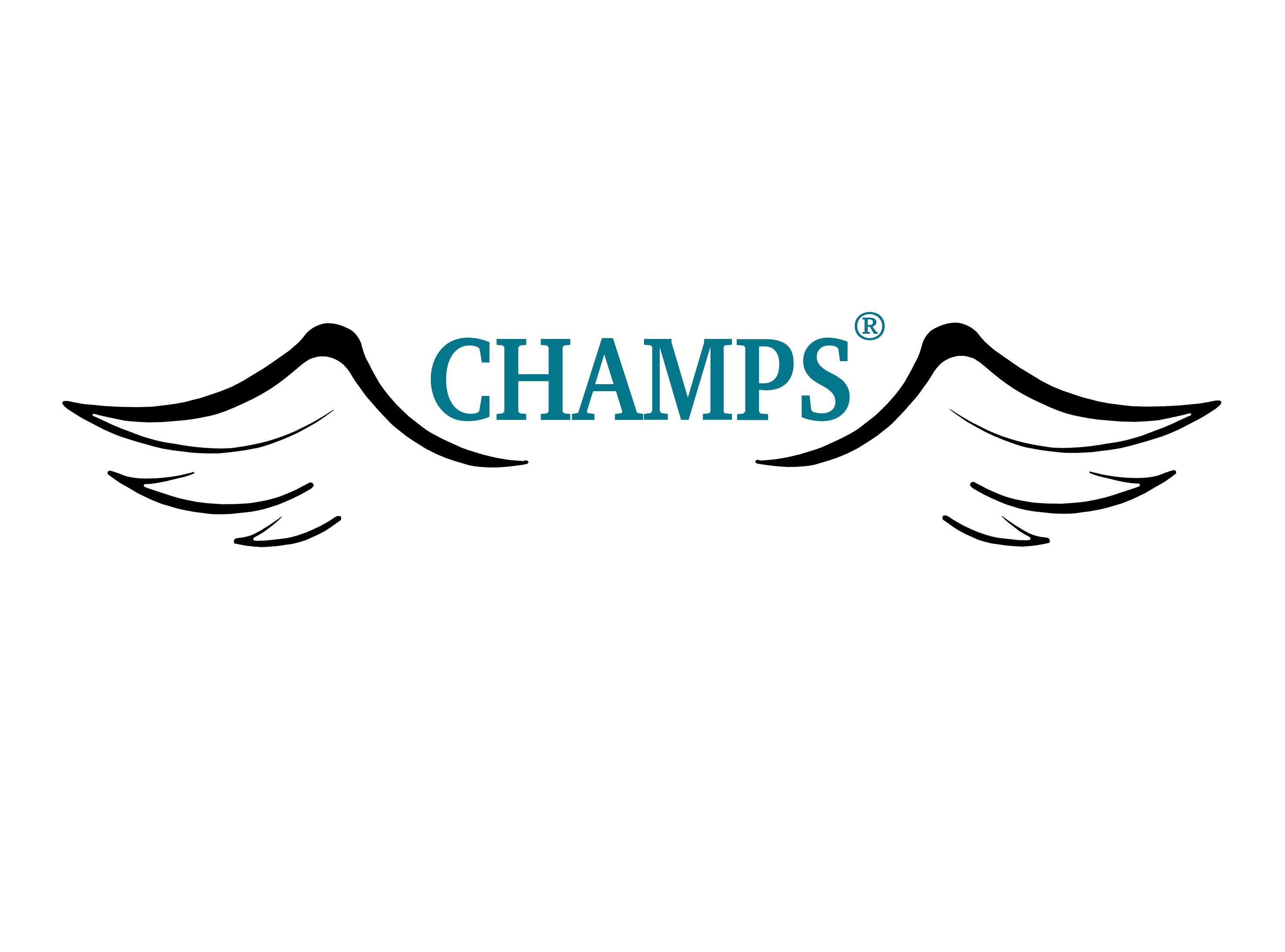 Projekt: CHAMPS